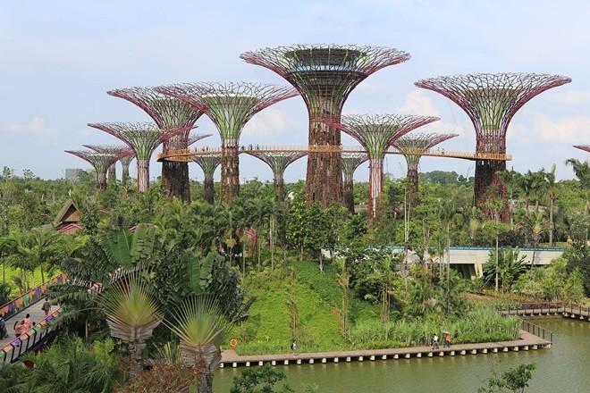 Ông Lý Quang Diệu phủ xanh đảo quốc Singapore (1)